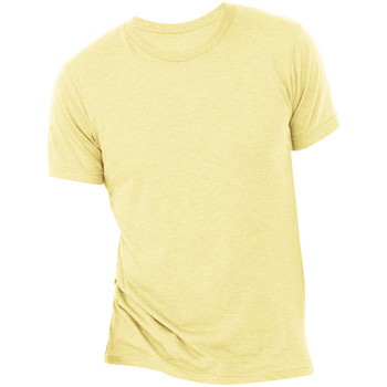 Vêtements Homme T-shirts manches courtes Bella + Canvas Triblend Or