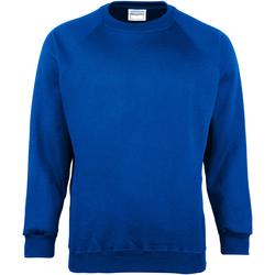 Vêtements Enfant Sweats Maddins  Bleu roi