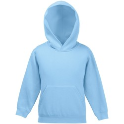 Vêtements Enfant Sweats Fruit Of The Loom Hooded Bleu ciel