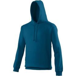 Vêtements Sweats Awdis College Bleu  turquoise