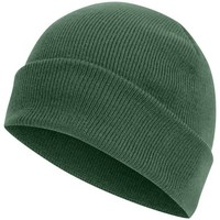 Accessoires textile Bonnets Absolute Apparel Knitted Vert bouteille