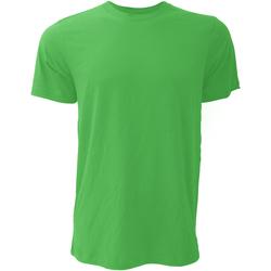 Vêtements Homme T-shirts manches courtes Bella + Canvas Jersey Vert tendre