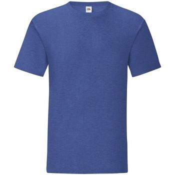 Vêtements Homme T-shirts manches courtes Fruit Of The Loom Iconic Bleu roi chiné