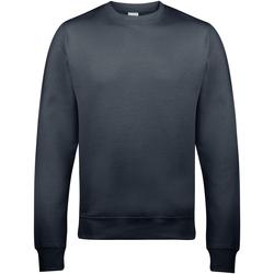 Vêtements Homme Sweats Awdis JH030 Gris tempête
