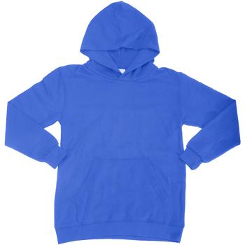 Vêtements Enfant Sweats Sg Hooded Bleu royal