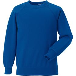 Vêtements Enfant Sweats Jerzees Schoolgear Raglan Bleu roi vif