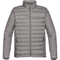 Vêtements Homme Doudounes Stormtech Quilted Titane