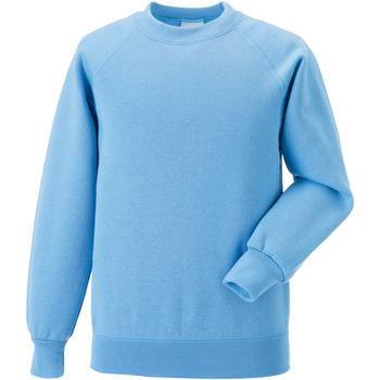 Vêtements Enfant Sweats Jerzees Schoolgear Raglan Bleu ciel