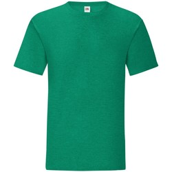 Vêtements Homme T-shirts manches courtes Fruit Of The Loom Iconic Vert chiné