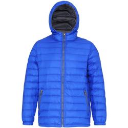 Vêtements Homme Doudounes 2786 TS016 Bleu roi/ Gris