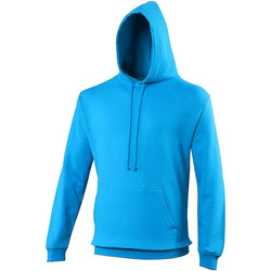 Vêtements Sweats Awdis Hooded Bleu maya