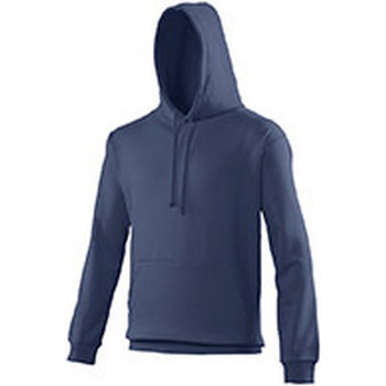 Vêtements Sweats Awdis Hooded Bleu gris
