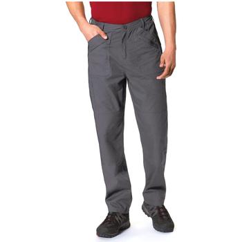 Vêtements Homme Pantalons cargo Regatta TRJ330R Gris foncé