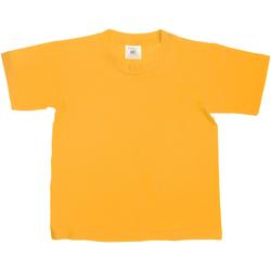 Vêtements Enfant T-shirts manches courtes B And C Exact Or
