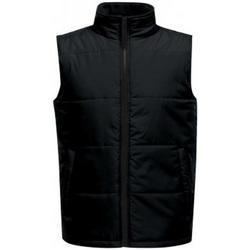 Vêtements Homme Doudounes Regatta Standout Noir