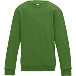 Vêtements Enfant Sweats Awdis JH30J Vert tendre