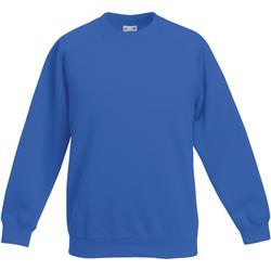 Vêtements Enfant Sweats Fruit Of The Loom Raglan Bleu royal