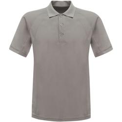 Vêtements Homme Polos manches courtes Regatta RG524 Gris argent