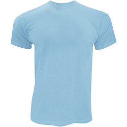 Vêtements Homme T-shirts manches courtes Fruit Of The Loom Original Bleu ciel