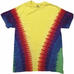 Vêtements T-shirts manches courtes Colortone TD05M Arc-en-ciel