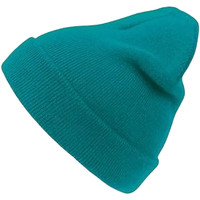 Accessoires textile Bonnets Atlantis  Turquoise