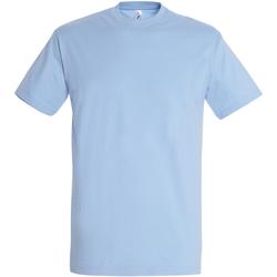 Vêtements Homme T-shirts manches courtes Sols Imperial Bleu ciel