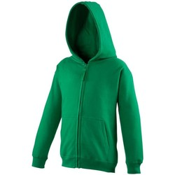 Vêtements Enfant Sweats Awdis Hooded Vert tendre
