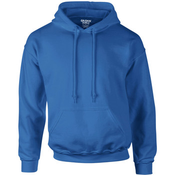 Vêtements Homme Sweats Gildan Hooded Bleu royal