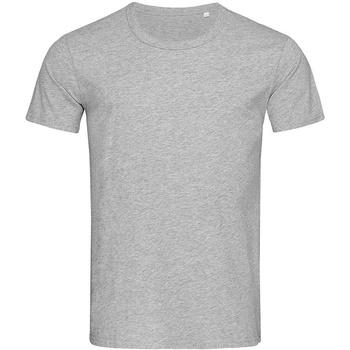 Vêtements Homme T-shirts manches courtes Stedman Stars Stars Gris