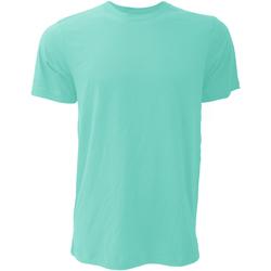 Vêtements Homme T-shirts manches courtes Bella + Canvas Jersey Sarcelle