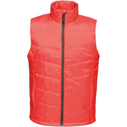 Vêtements Homme Doudounes Regatta Insulated Rouge