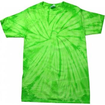 Vêtements Enfant T-shirts manches courtes Colortone Spider Vert citron
