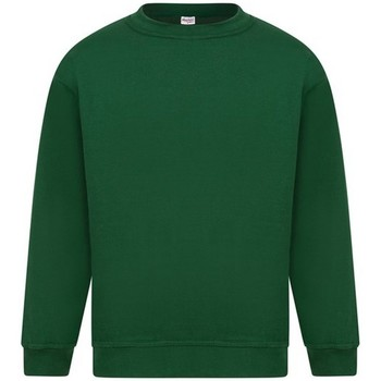 Vêtements Homme Sweats Absolute Apparel Sterling Vert bouteille