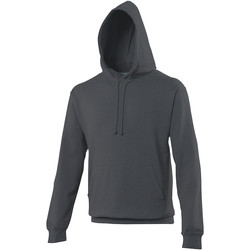 Vêtements Sweats Awdis Hooded Gris de Payne