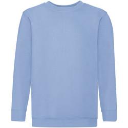 Vêtements Enfant Sweats Fruit Of The Loom 62041 Bleu ciel