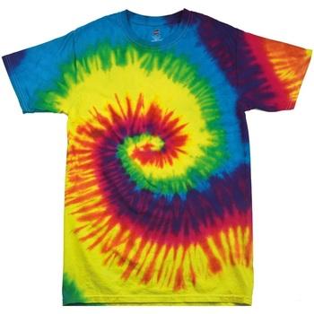 Vêtements Enfant T-shirts manches courtes Colortone TD02B Arc-en-ciel