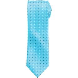 Vêtements Homme Cravates et accessoires Premier Squares Turquoise