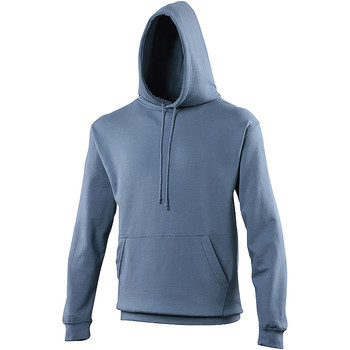 Vêtements Sweats Awdis Hooded Bleu ardoise