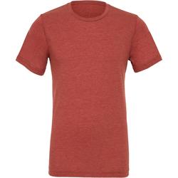 Vêtements Homme T-shirts manches courtes Bella + Canvas Triblend Argile