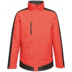 Vêtements Homme Blousons Regatta RG421 Rouge / noir