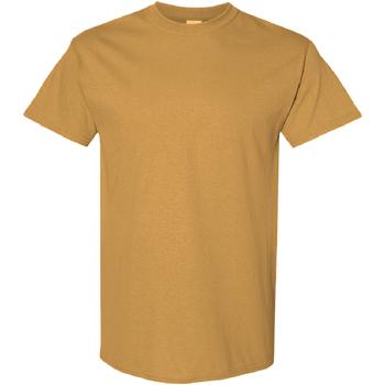Vêtements Homme T-shirts manches courtes Gildan Heavy Vanille