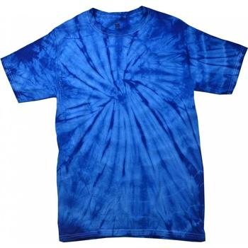 Vêtements Enfant T-shirts manches courtes Colortone Spider Bleu roi