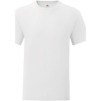 Vêtements Homme T-shirts manches courtes Fruit Of The Loom Iconic Blanc