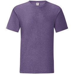 Vêtements Homme T-shirts manches courtes Fruit Of The Loom Iconic Violet chiné