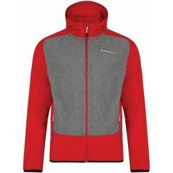 Vêtements Homme Blousons Dare 2b Softshell Orange / gris