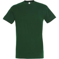 Vêtements Homme T-shirts manches courtes Sols 11380 Vert bouteille