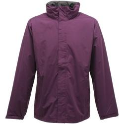 Vêtements Homme Coupes vent Regatta TRW461 Violet/Gris