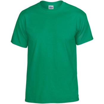 Vêtements Homme T-shirts manches courtes Gildan DryBlend Vert
