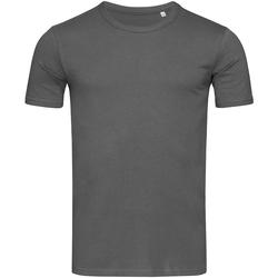 Vêtements Homme T-shirts manches courtes Stedman Stars Morgan Gris ardoise