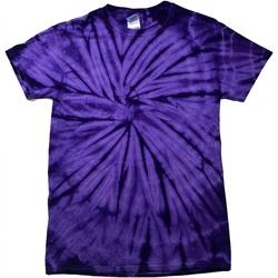 Vêtements Enfant T-shirts manches courtes Colortone Spider Pourpre